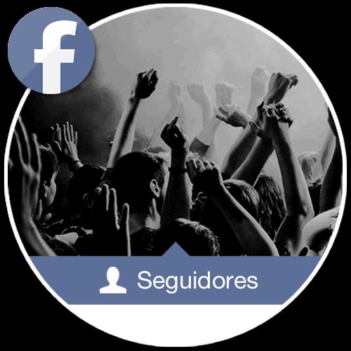 Seguidores Facebook